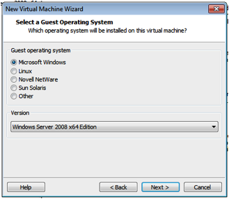 VMWare Windows 2008 Guest.png